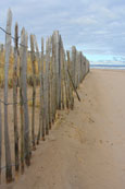 The West Sands at St Andrews, Fife, Scotland