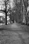 Lady Mary's Walk at Crieff, Perthshire, Scotland